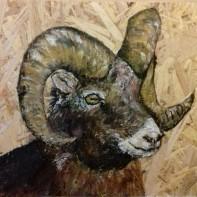 Goat Say Cheese. Janys Thornton