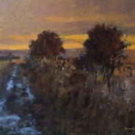Sunset on the Downs. Guy Bailey